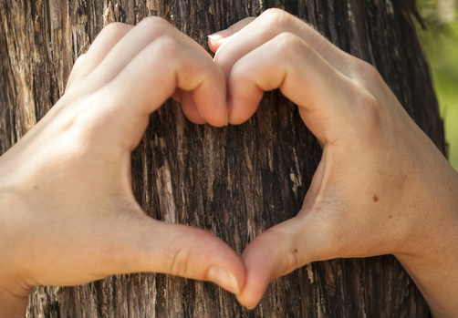Beyond Word Of Mouth: How To Shape A Soul Satisfying Wellness Practice